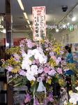 お花fromアップル